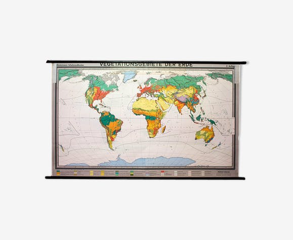 """Poster """"Vegetation of the Earth"""" educational board 1959"""