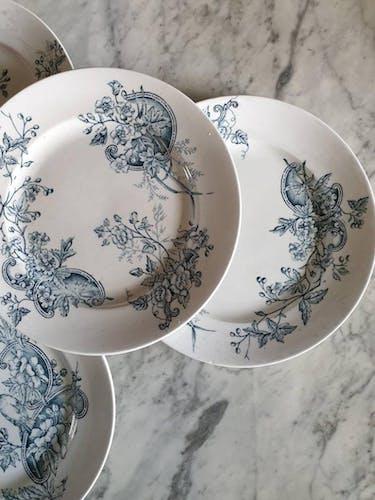 6 assiettes à dessert anciennes en terre de fer modèle oiseaux de la manufacture française de Saint Amand