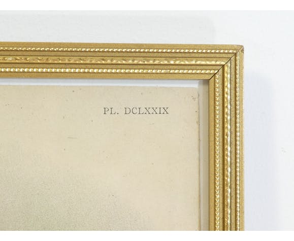 Lithographie d' orchidee planche ancienne cadre doré déco loft