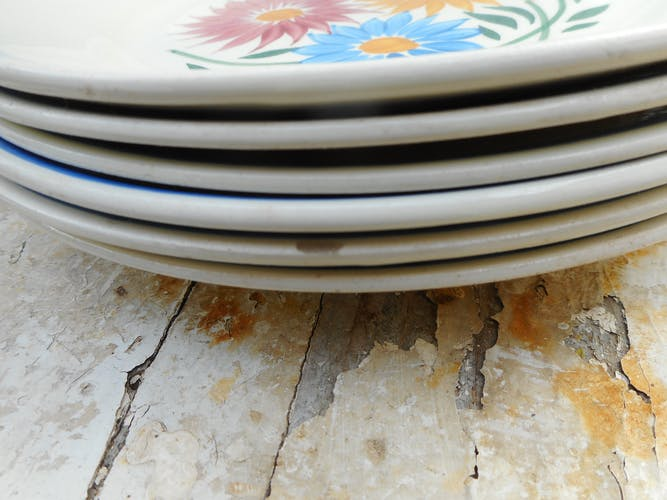 Lot de 6 assiettes en faïence de Sarreguemines