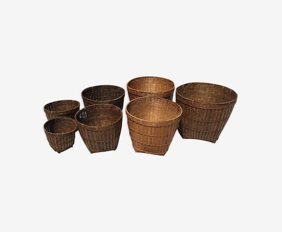 Series hides bamboo pots