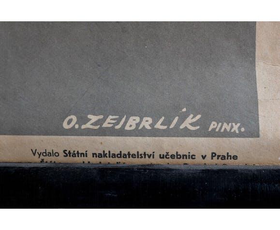 Educational poster Krásnoočko zelené (1951)