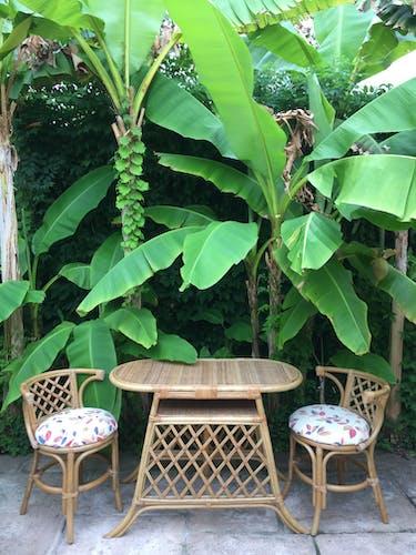 Duo table et chaises en rotin et bambou vintage Tiki