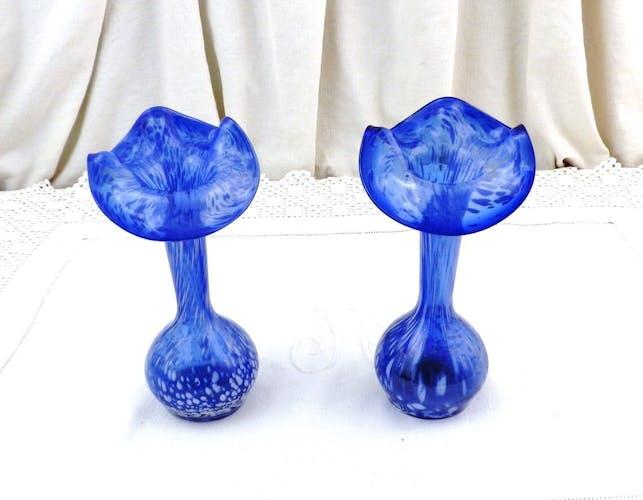 Ensemble de 2 vases à fleurs assortis