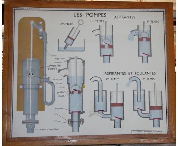 Affiche scolaire ancienne Sciences Rossignol 5 et 6