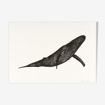 Carmen the whale, risography a4