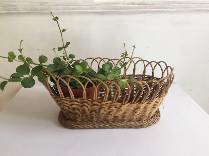 Rotin gardener