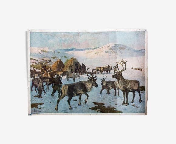 "Poster ""Reindeer"" Grid Educational A. Wagner 1923"