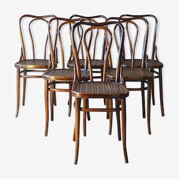 Set de 6 chaises Bistrot bois-courbé Glarus 1920