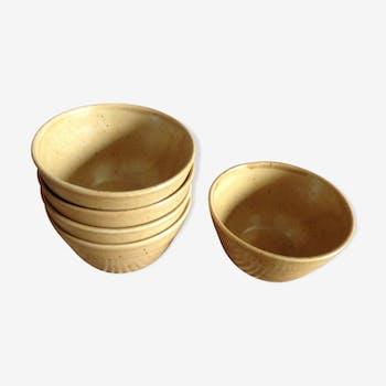 Set of 5 bowls in stoneware Digoin