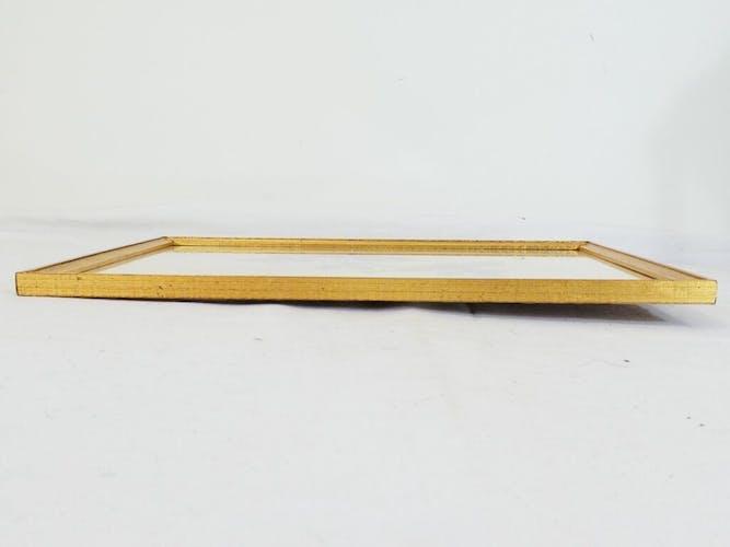 Piseaux pinson du nord male et femelle cadre doré